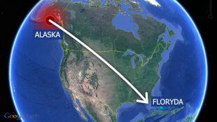 Wstrząs na Alasce, skutki na Florydzie. Odległość? Kilka tysięcy kilometrów