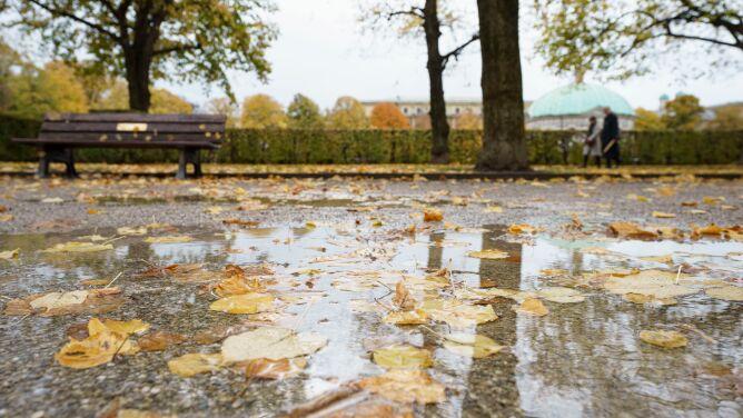 Pogoda na dziś: wiele deszczowych miejsc, lokalnie zagrzmi
